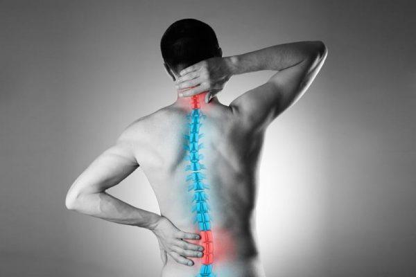 zdrowy kręgosłup, trening dla kręgosłup, fitness pabianice, strefa ruchu